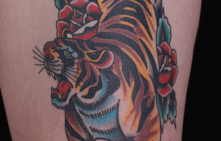 andy-canino-dedication-tattoo-traditional-tiger-roses-thigh