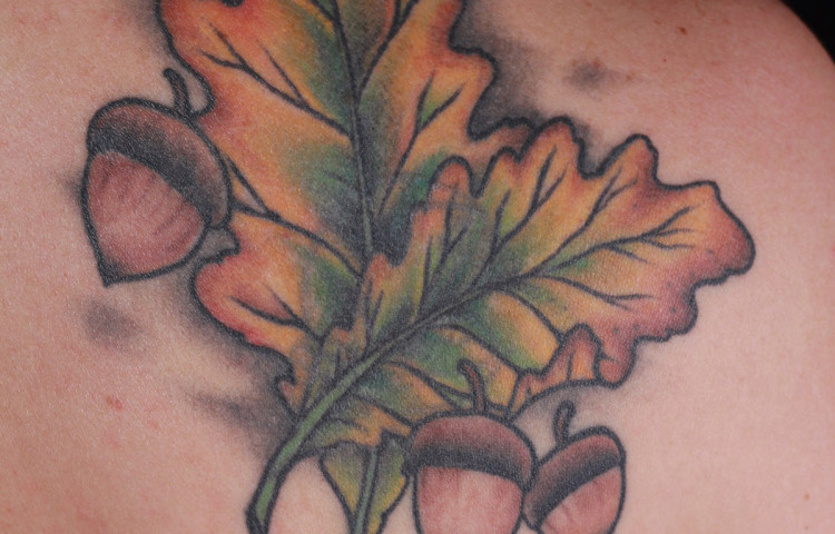haley-mcmahon-dedication-tattoo-leaves-acorn-shoulder